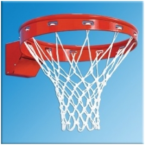 """Krepšinio lankas """"Profi"""""""
