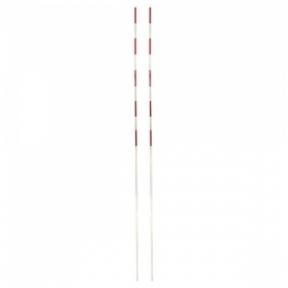 Tinklinio antenos (pora)