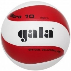 Tinklinio kamuolys GALA BORA 10 BV 5671 S